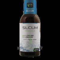 Santé Verte Silicium Solution buvable Fl/500ml à Nice