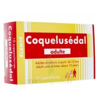 COQUELUSEDAL ADULTES, suppositoire à Nice