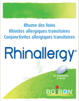 Boiron Rhinallergy Comprimés B/40 à Nice