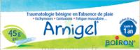Boiron Arnigel Gel T/45g à Nice